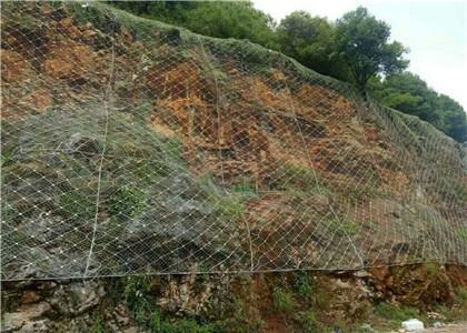 黑龙江主动防护网