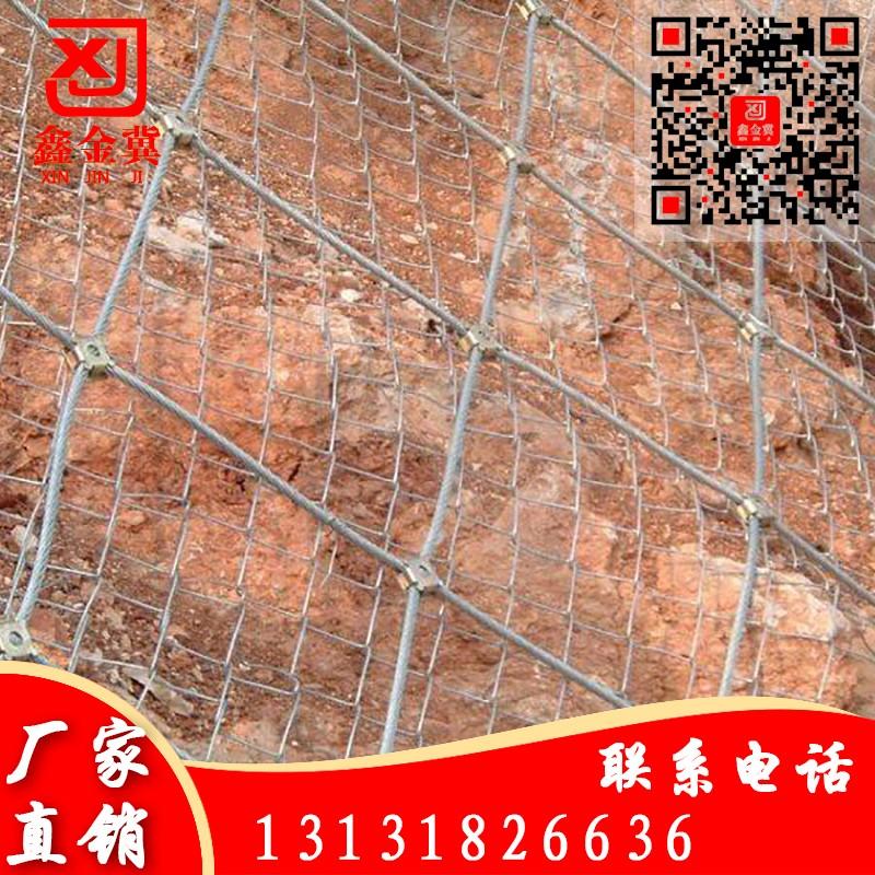 主动网、钢丝绳网.jpg