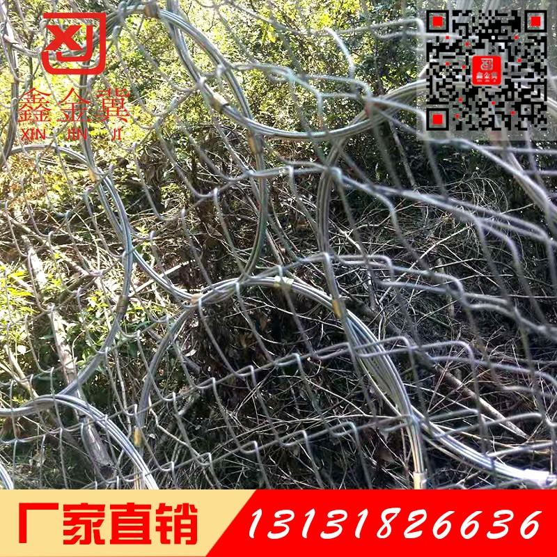 环形边坡防护网.jpg