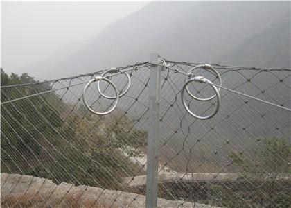 被动防护网